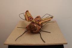 Cecilia Garcia, 55 cm ancho, Oleo sobre tela, Escarabajo-min